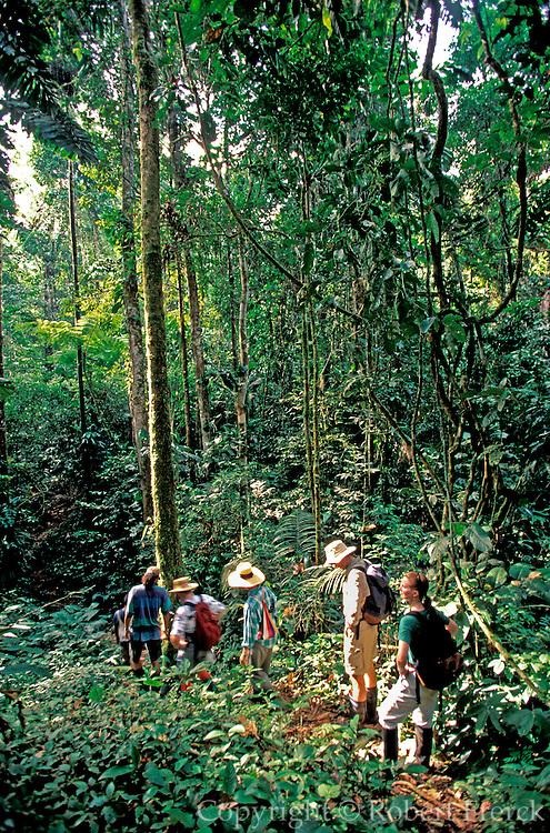 ECUADOR, AMAZON BASIN Napo River; hiking through rainforest