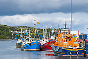 Bright coloured fishermens' trawlers moored at Campbeltown Port, Isle of Arran, Scotland