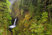 One of Eagle Creek's many scenic stops in the Columbia River Gorge, Metlako Falls.
