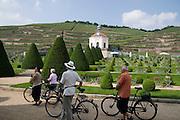 Weingut Schloss Wackerbarth, Garten, Radfahrer, Radebeul bei Dresden, Sachsen, Deutschland.|.Castle Wackerbarth, vinery, garden with cyclists, Radebeul near Dresden, Germany