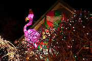 A decidely non-traditional pink flamingo with a Santa hat.