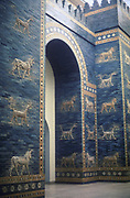 Ishtar Gate through which ran a processional road. One of 8 fortified gates of Nebuchandrezzar's (Nebuchanezzar) city of Babylon, it was decorated with dragons and  young bulls in brick relief. Neo-Babylonian c575 BC; restored glazed brick. Pergamon Museum.