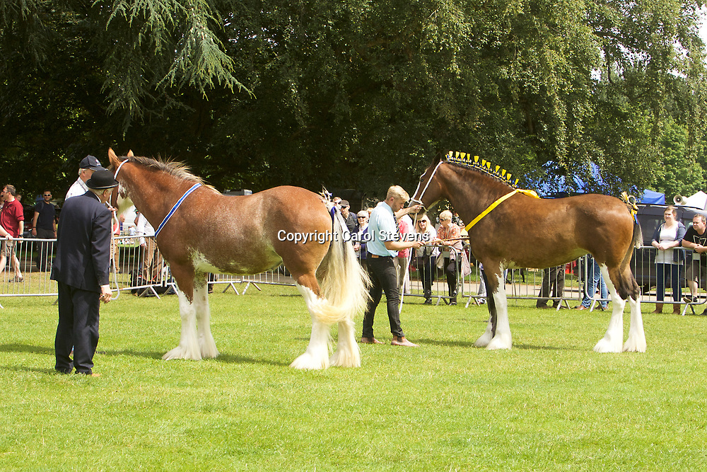 LEFT  <br />
