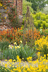 The Cottage Garden at Sissinghurst Castle in spring. Planting includes Iris 'Curlew' and Erysimum 'Fire King'