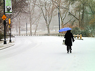 Snow storm in Central Park, New York City