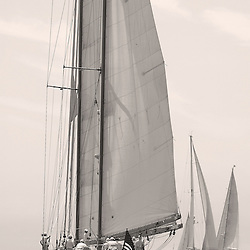Large sail boats crusing through fog in Newport , Rhode Island.