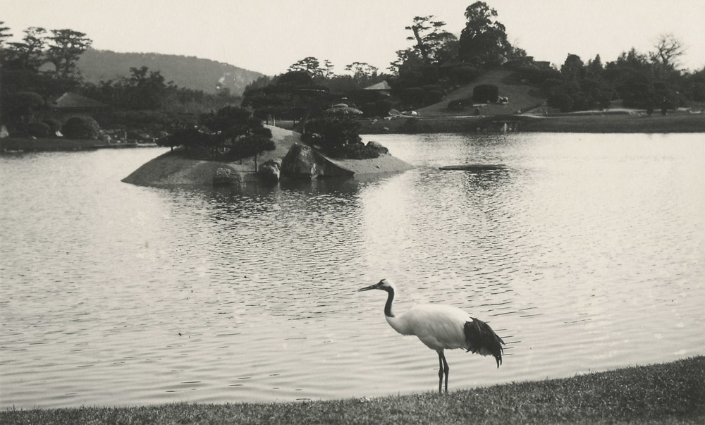 Kurokawa Suizan<br /> Korakuen Gardens, Okayama<br /> <br /> From a special boxed photo collection that includes 55 Vintage silver gelatin prints housed in an inscribed and credited kiri wood box.<br /> <br /> Collection price: Please inquire<br /> <br /> <br /> <br /> <br /> <br /> <br /> <br /> <br /> <br /> <br /> <br /> <br /> <br /> <br /> <br /> <br /> <br /> <br /> <br /> <br /> <br /> <br /> <br /> <br /> <br /> <br /> <br /> <br /> <br /> <br /> <br /> <br /> <br /> <br /> <br /> <br /> <br /> <br /> <br /> <br /> <br /> <br /> <br /> <br /> <br /> <br /> <br /> <br /> <br /> <br /> <br /> <br /> <br /> <br /> <br /> <br /> <br /> <br /> <br /> <br /> <br /> <br /> <br /> <br /> <br /> <br /> <br /> .