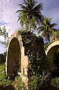 Old Sugar Mill - Pantrepant Jamaica