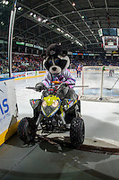 KELOWNA, CANADA - JANUARY 27: Rocky Racoon, the mascot of the Kelowna Rockets exits the ice against the Kamloops Blazers on January 27, 2017 at Prospera Place in Kelowna, British Columbia, Canada.  (Photo by Marissa Baecker/Shoot the Breeze)  *** Local Caption ***