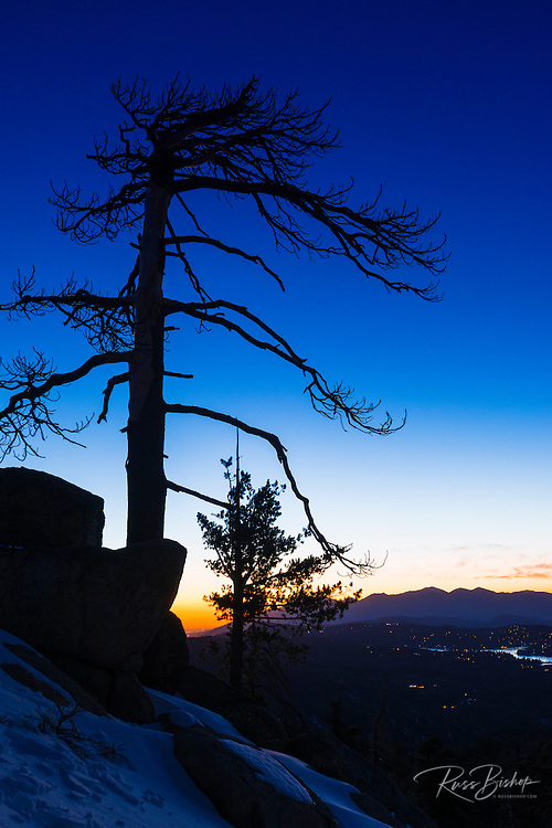 Evening light over the San Bernardino Mountains, San Bernardino National Forest, California USA