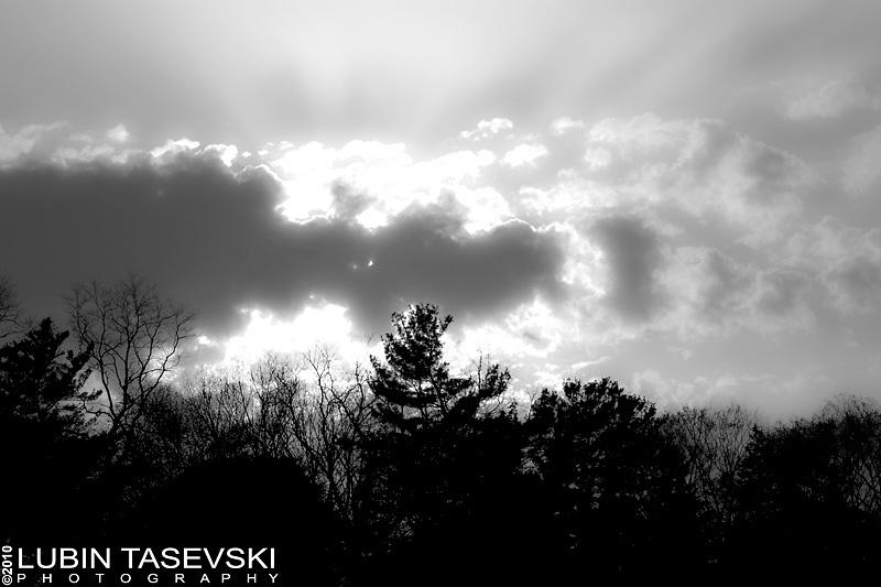 Lubin Tasevski Photography, Nature