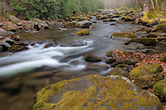 Rocky creek flows through moss covered boulders, Great Smoky Mountains National Park