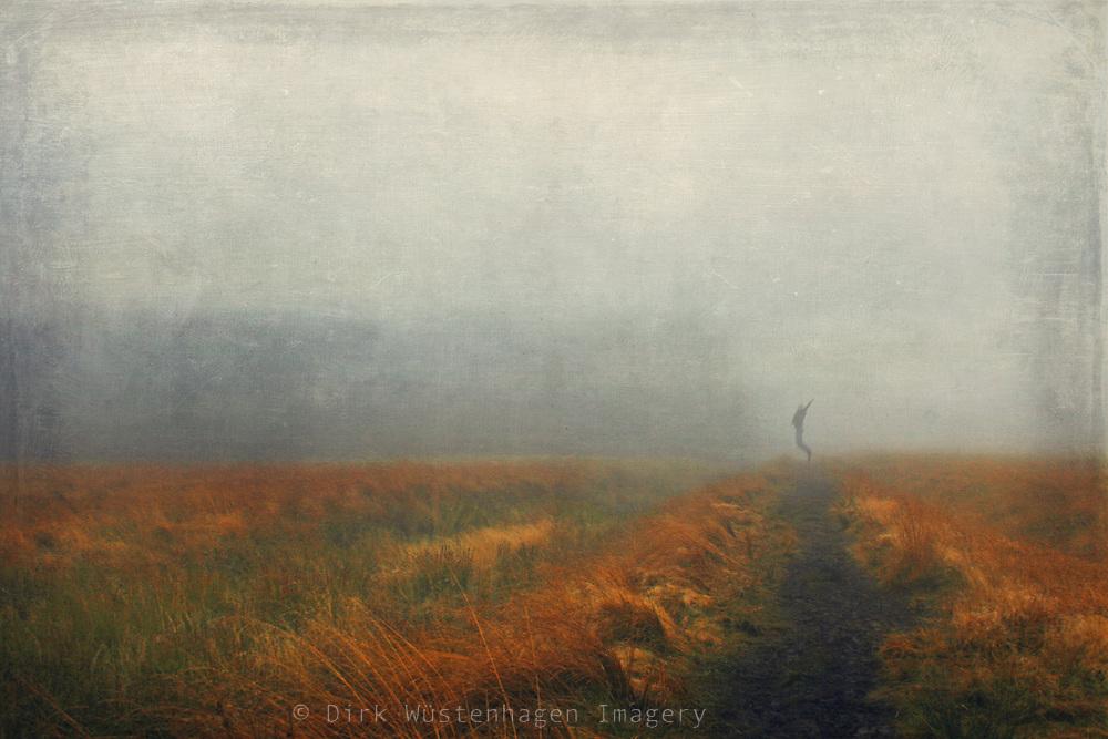 Path through the high moor High Fens, Belgium<br /> <br /> Prints &amp; more:<br /> http://society6.com/DirkWuestenhagenImagery/black-path_Print