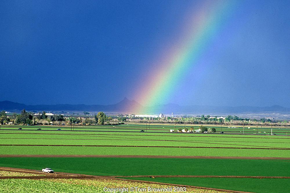 Yuma, Arizona agricultureal fields.