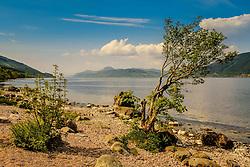 Looking over Loch Ness from the eastern shore near Foyers<br /> <br /> (c) Andrew Wilson   Edinburgh Elite media