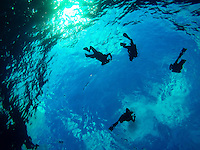 Maui Beach Vacation 2015 - Scuba Divers Descending into the Molokini Crater<br /> <br /> ©2015, Sean Phillips<br /> http://www.RiverwoodPhotography.com