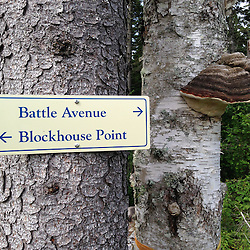 Trail Sign and Fungus, Witherle Woods, Castine, Maine, US