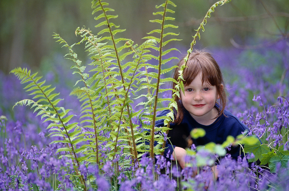 Little girl hiding behind a fern in a bluebell wood