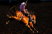 at the Eugene Pro Rodeo on Friday. (Ryan Kang/The Register-Guard)