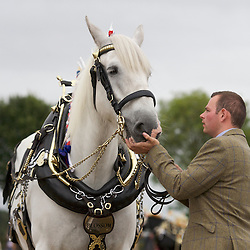 European Horse Ploughing Competition 2016 National Horse Ploughing Competition and Demonstrations 2016<br />