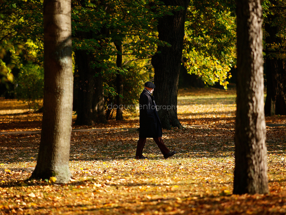 A man walking through Margaret Island park, Budapest, Hungary.