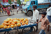 Ravi, 11, (right) Poonam's older brother, is helping his father Suresh Jatevm, 42, to carry and sell papayas on their wheeled cart along the streets of Bhopal, Madhya Pradesh, India, near the abandoned Union Carbide (now DOW Chemical) industrial complex.