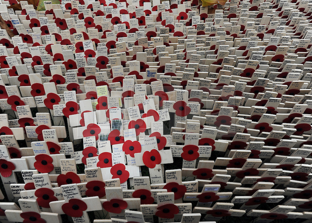 © Licensed to London News Pictures. 10/11/2011. London, UK. Crosses with poppies. HRH The duke of Edinburgh opens the annual Field of Remembrance at Westminster Abbey today 10 November. . Photo credit : Stephen Simpson/LNP