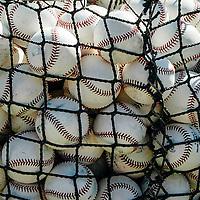 MLB_Web