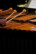 A marimba player during Rowan University's 2010 presentation of The Percussion Ensemble and Marimba Band.
