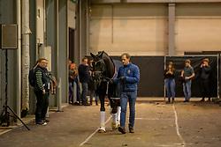 Totilas, Mathias Alexander Rath<br /> KWPN Hengstenkeuring - 's Hertogenbosch 2019<br /> © Hippo Foto - Dirk Caremans<br /> 02/02/2019