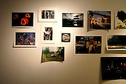 San Antonio, Texas. October 2011. The prints that create 'BURN-ed Garden' at Smartart Project Space.