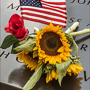 On the 15th anniversary of 9-11 at Ground Zero, sunlower,rose and American flag placed on the memorial plagues  by a loved ones by the name of a family member who died that day.<br /> <br /> The 2,983 names of the victims of the attacks of Sept. 11, 2001, and Feb. 26, 1993, World Trade Center truck bombing are inscribed into bronze parapets surrounding the twin memorial pools.
