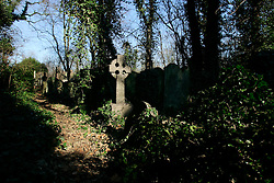 UK ENGLAND LONDON 4MAR06 - Tower Hamlets Cemetery Park opened in 1841 and was the most working class of London's Victorian cemeteries. In 1966, the Greater London Council bought the cemetery and it was closed for burials with the intention of creating an open space for the public. In 2000, the cemetey park became Tower Hamlets' first local nature reserve...jre/Photo by Jiri Rezac..© Jiri Rezac 2006..Contact: +44 (0) 7050 110 417.Mobile:  +44 (0) 7801 337 683.Office:  +44 (0) 20 8968 9635..Email:   jiri@jirirezac.com.Web:    www.jirirezac.com..© All images Jiri Rezac 2006 - All rights reserved.