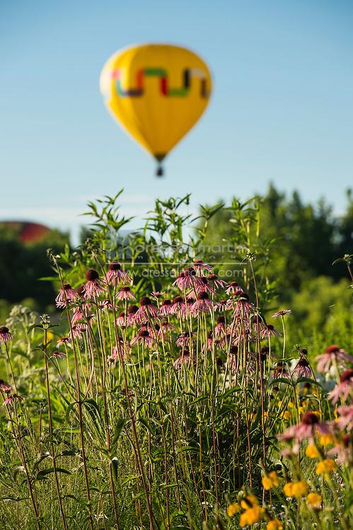 hot air balloon chatfield visitors center garden