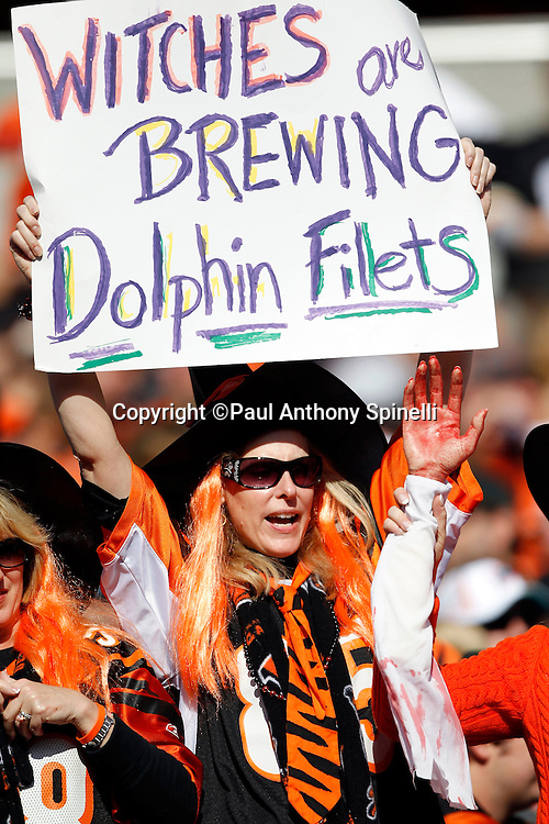"""A Cincinnati Bengals fan holds up a sign stating """"Witches are brewing Dolphin filets"""" while wearing a Halloween Costume during the NFL week 8 football game against the Miami Dolphins on Sunday, October 31, 2010 in Cincinnati, Ohio. The Dolphins won the game 22-14. (©Paul Anthony Spinelli)"""