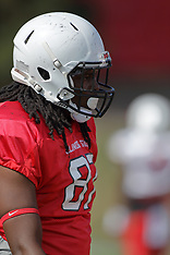 Robert Gillum Illinois State Redbird football photos