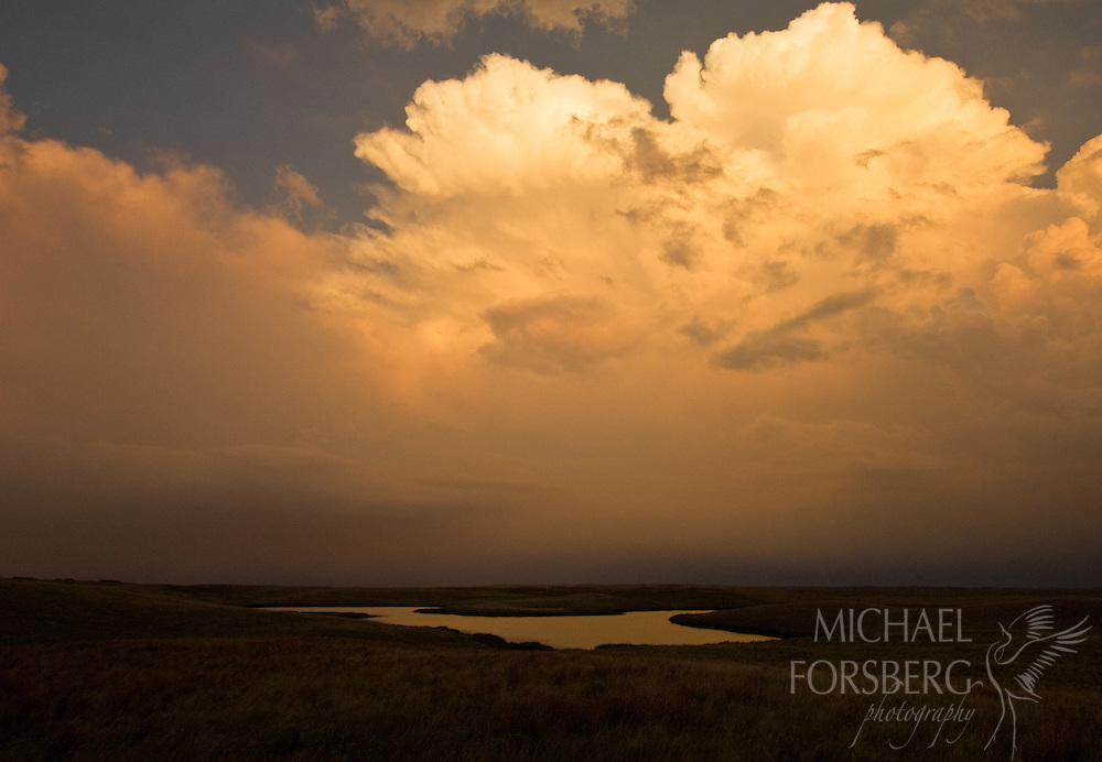 At dusk a thunderhead lights up a prairie pothole in the Missouri Coteau, where millions of these wetlands, critical to prairie wildlife, nestle in depressions left behind by the last glaciation. Kidder County, North Dakota.
