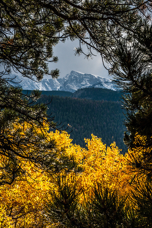 A storm approaches the mountains, seen through a window in the trees in Rocky Mountain National Park