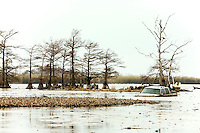 Abandoned truck left abandoned in lake in Venice, LA.  Copyright 2011 Reid McNally