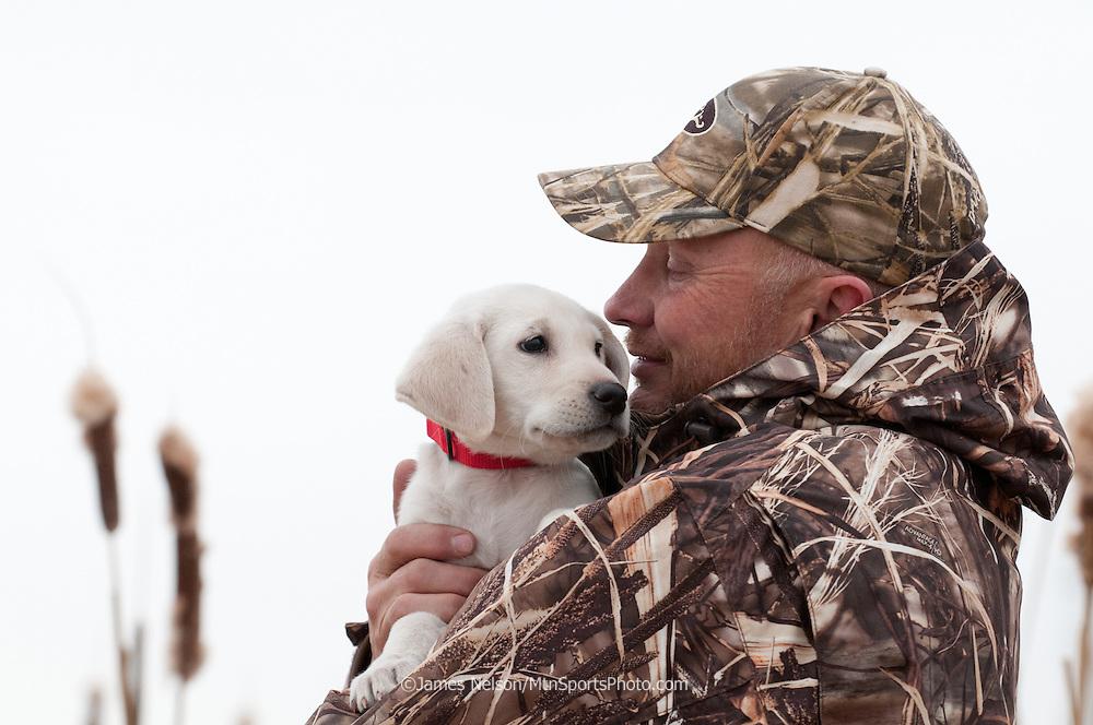 Gun dog trainer Glen Cropper cradles a yellow Labrador puppy.