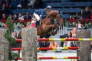 Katharina Offel - Catan 13<br /> World Equestrian Festival, CHIO Aachen 2013<br /> © DigiShots