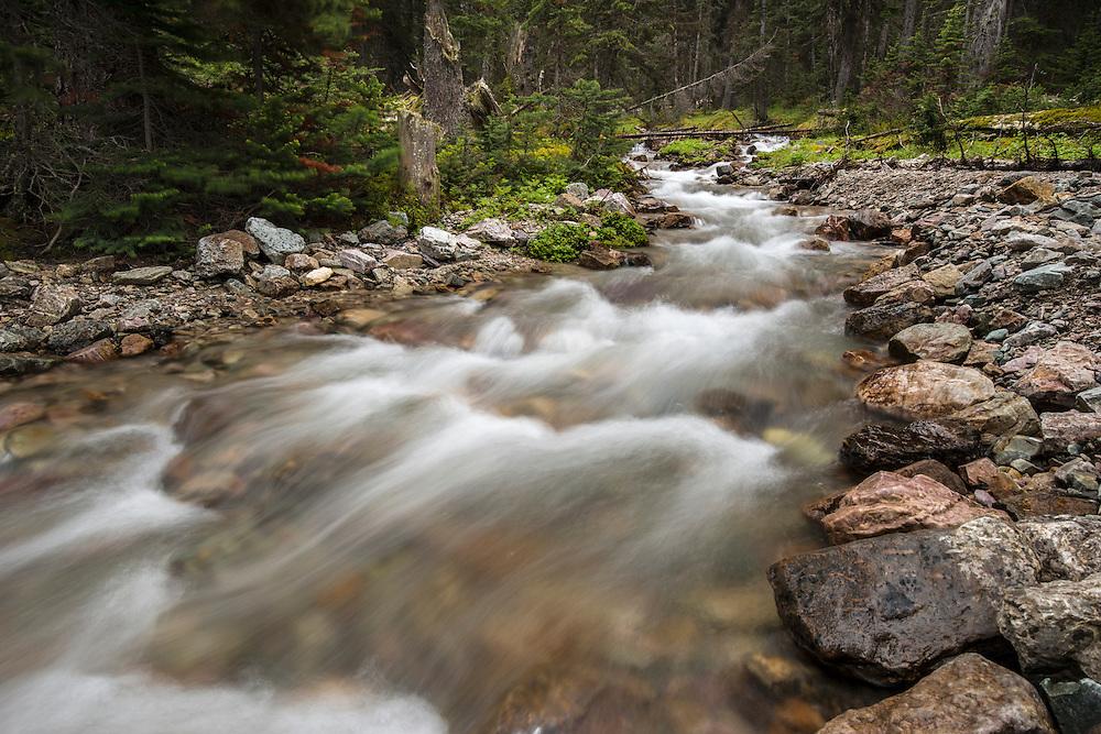 Mountain stream feeding Lake O'Hara, Yoho National Park, Canada