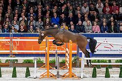 227, Mourinho<br /> KWPN hengstenkeuring - 's Hertogenbosch 2020<br /> © Hippo Foto - Dirk Caremans<br />  29/01/2020