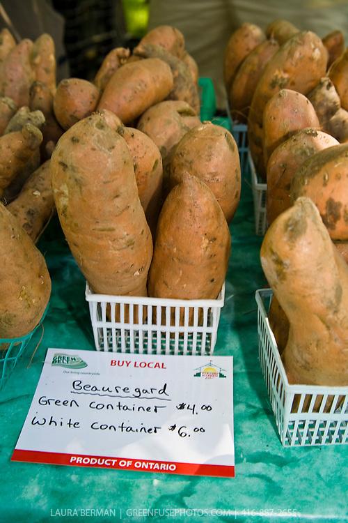 Proracki Sweet Potatoes