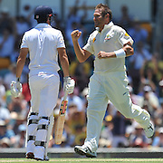 "Ryan Harris celebrates the crucial wicket of England Opener and Captain Alastair Cook caught behind before lunch on Day 2 of the 1st Test in the 2013-14 Ashes Cricket Series between Australia and England at the GABBA (Brisbane, Australia) from Thursday 21st November 2013<br /> <br /> Conditions of Use : NO AGENTS ~ This image is subject to copyright and use conditions stipulated by Cricket Australia.  This image is intended for Editorial use only (news or commentary, print or electronic) - Required Image Credit : ""Steven Hight - AURA Images"""