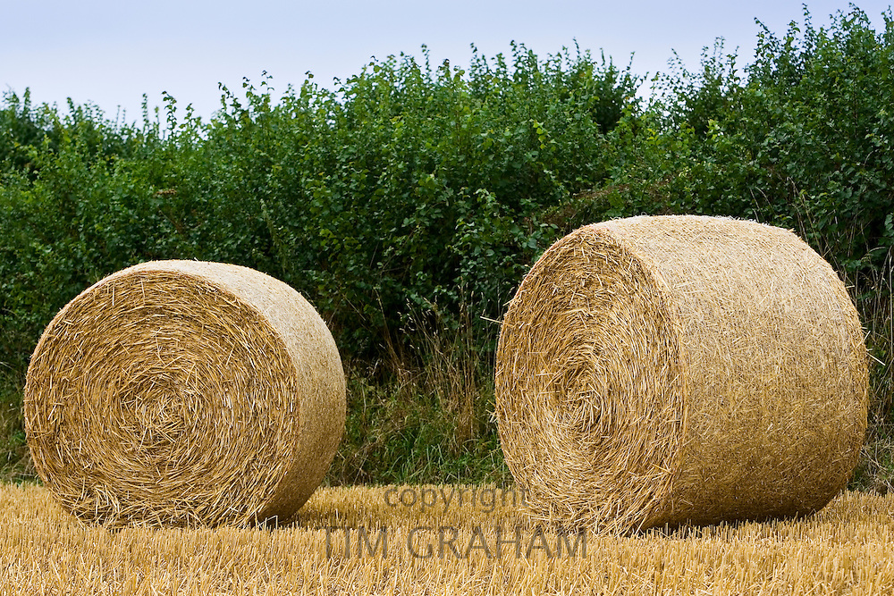 Straw bales, Cotswolds in Oxfordshire, United Kingdom