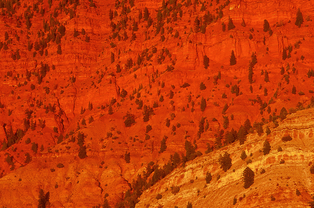 Sandstone rock illuminated in a warm red glow at sunset over Bellyache Mountain in Wolcott, Colorado.