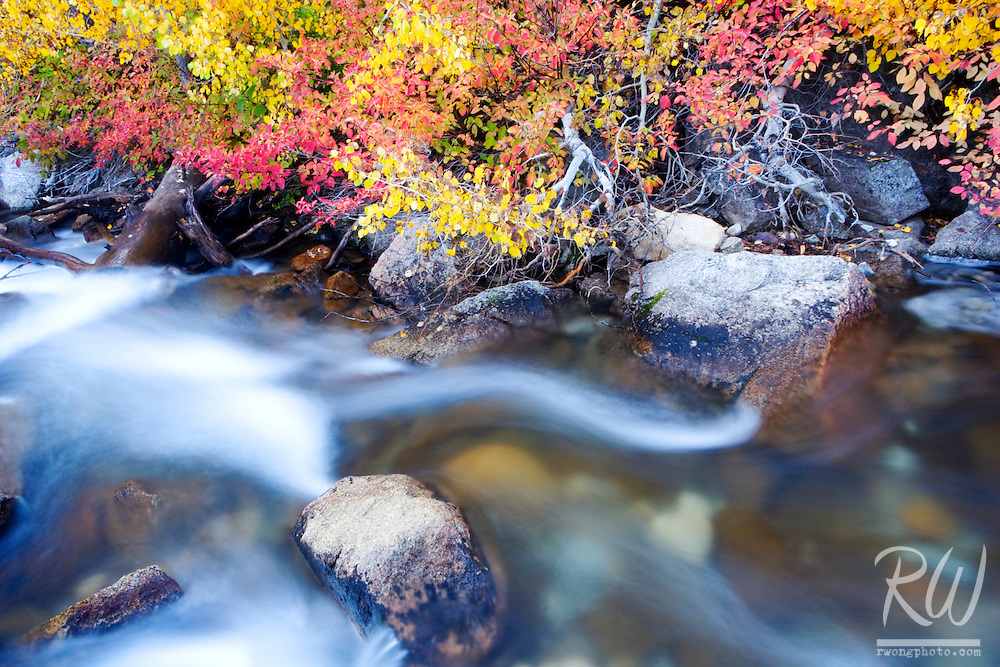 Middle Fork Bishop Creek and Fall Color, Eastern Sierra, California