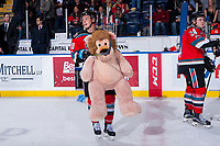 KELOWNA, CANADA - DECEMBER 2: Conner Bruggen-Cate #20 of the Kelowna Rockets skates with a teddy bear after triggering the annual teddy bear toss with a first period goal against the Kootenay Ice on December 2, 2017 at Prospera Place in Kelowna, British Columbia, Canada.  (Photo by Marissa Baecker/Shoot the Breeze)  *** Local Caption ***