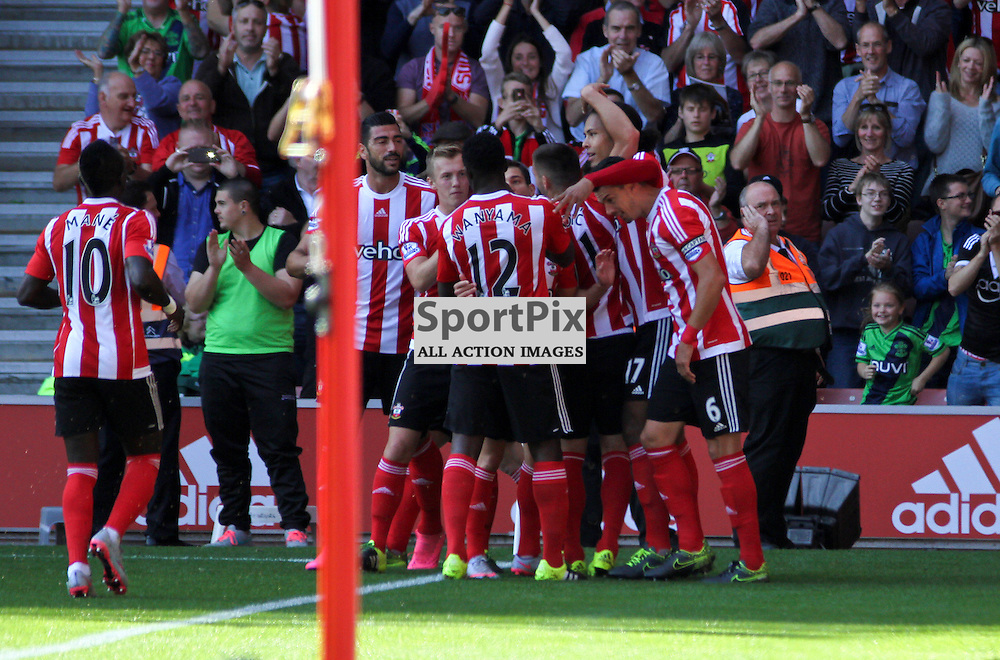 Virgil Van Dijk and the southampton team celebrate their first goal During Southampton vs Swansea on Saturday 26th September 2015.